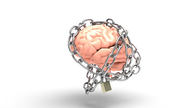 brain-3446307_640.jpg