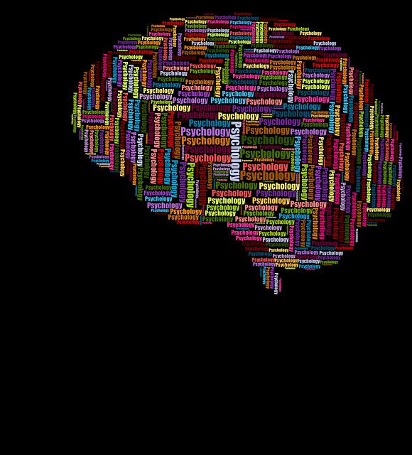 cranium-3350798_640.png